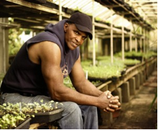 Will Allen, farmer, founder and CEO of Growing Power
