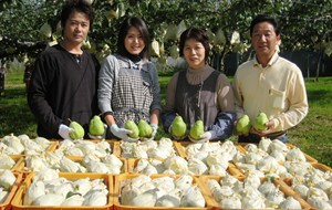 media-images-other-japan-direct-farm-sourcing-produce_130162379420391147_300x190.jpg