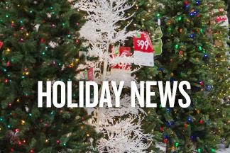Holiday News Promo
