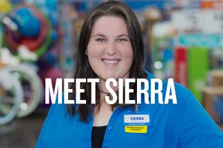 Meet Sierra homepage promo