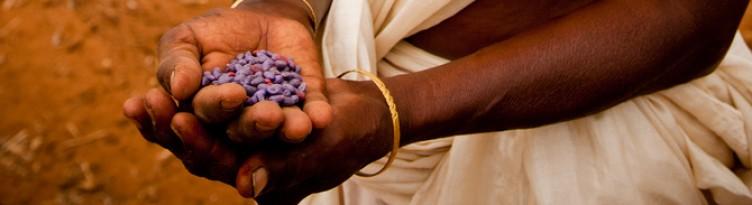 Global Women's Economic Empowerment Initiative