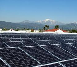 Global Responsibility Blog Hero: Solar Panels