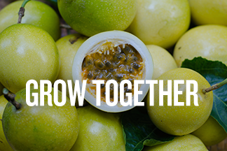 "A small pile of passion fruit are gathered together with the middle fruit sliced in half and displays the seeds. Text reads: ""Grow Together:"