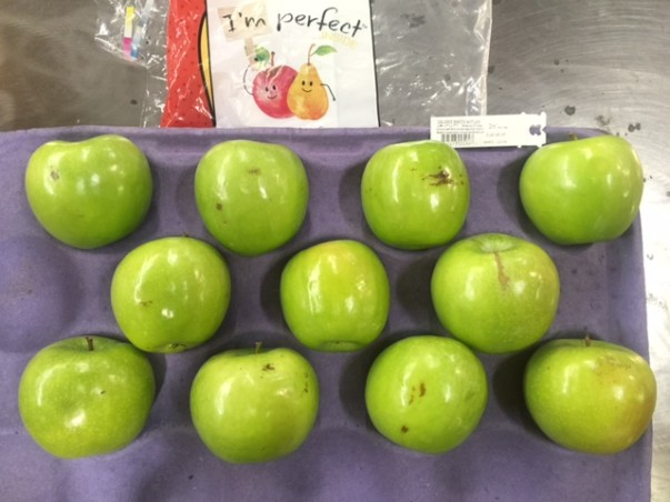 11 misshaped green apples are in an apple carton