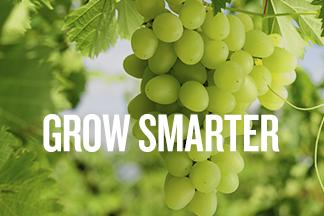 Grow Smarter