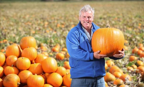 Asda Pumpkin Grower Kevin Curson with this year's bumper crop