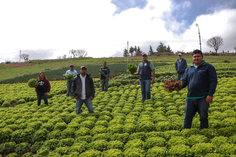 Walmart apoya a grupo de agricultores de Chalatenango