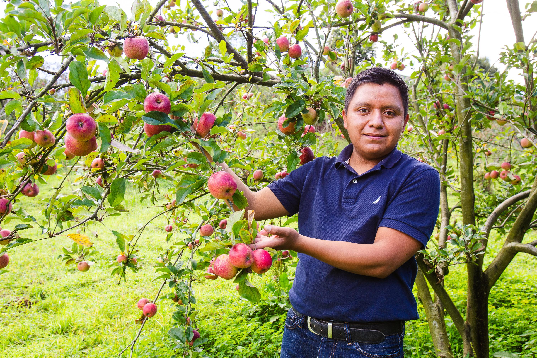 Mynor Algua: El emprendimiento que surgió de una semilla y vio crecer sus frutos