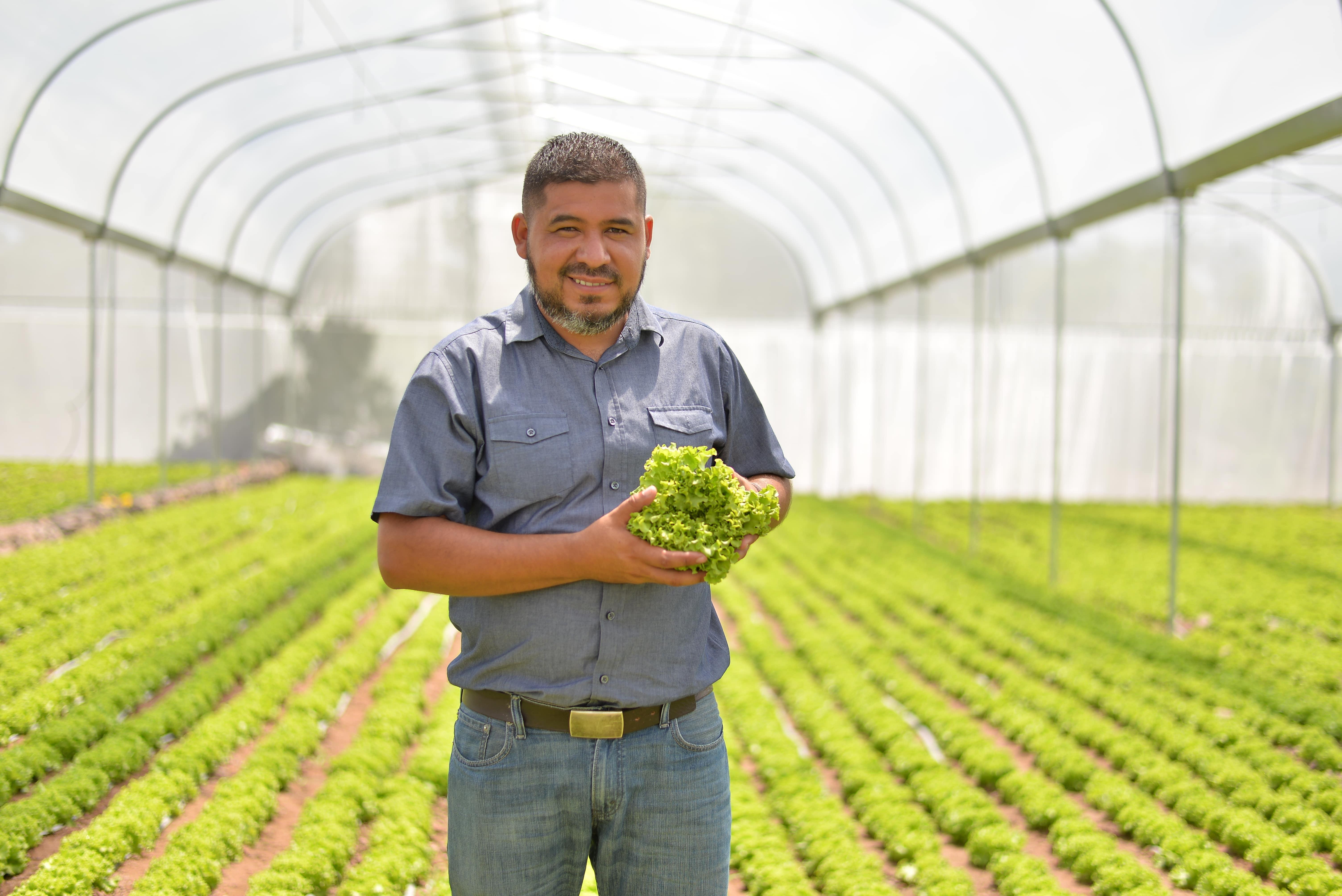 Productor nicaragüense de lechuga gana proyecto regional de inversión agropecuaria de Walmart Centroamérica