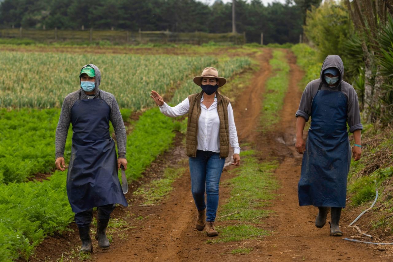 Vera Gómez: la cartaginesa que inició sembrando para su familia y ahora coloca sus productos en supermercados