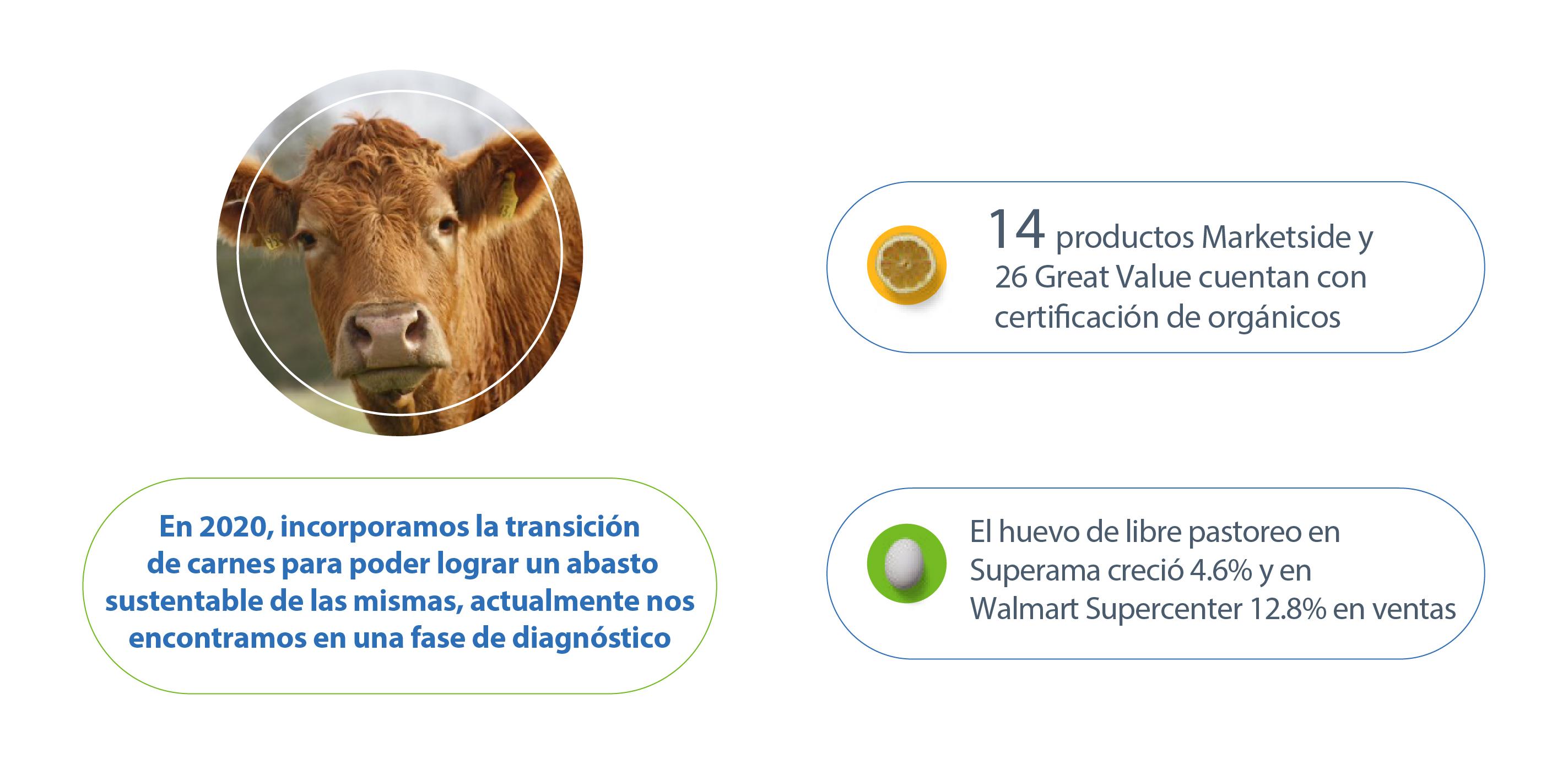 Carnes ESG