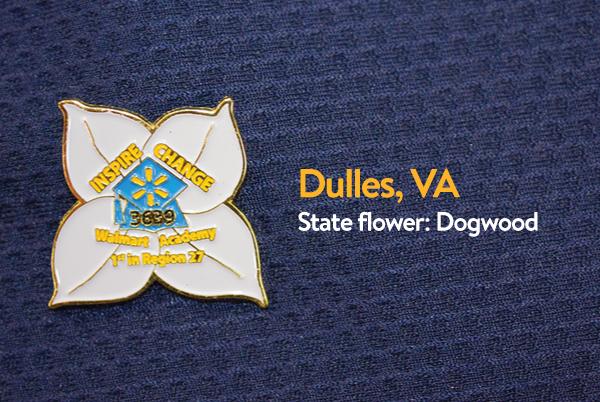 Walmart Academy Pin - Dulles, Virginia