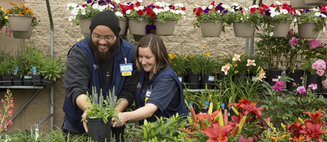 one year later how walmart has invested in people - Walmart Garden Center Plants