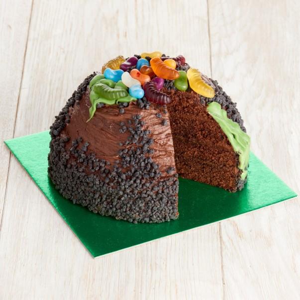 Creepy Crawly Cake
