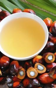 GRR: Palm Oil Image