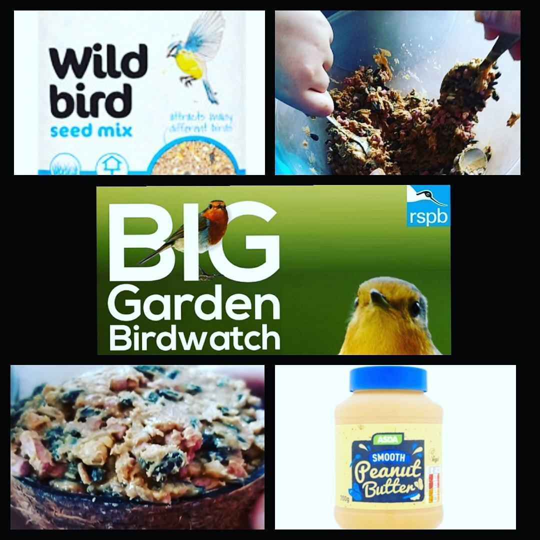RSPB Big Garden Bird Watch | Asda Blyth