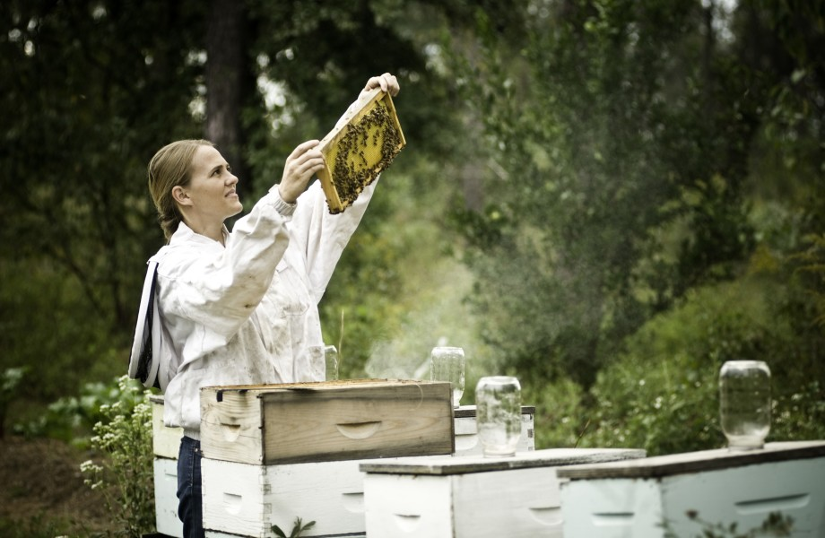 Heather Gamper is holding up a beehive full og bees