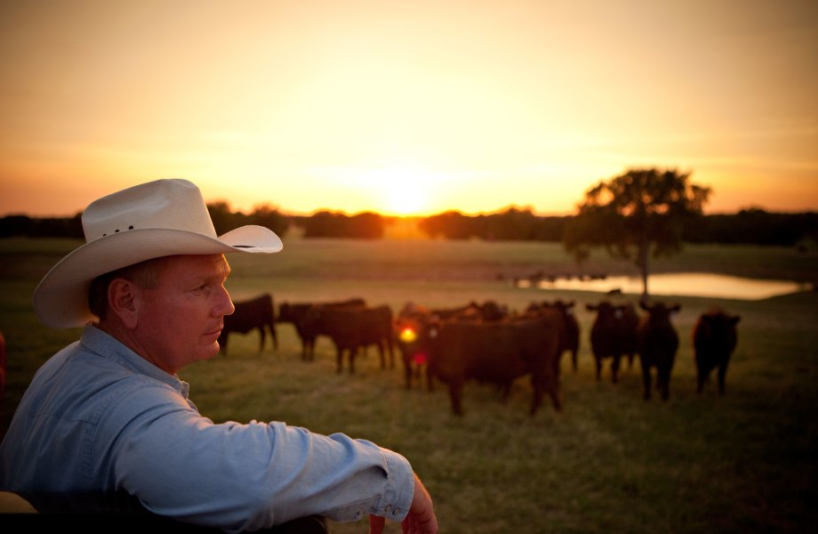 Texas rancher Bob McClaren leaning on fence with setting sun in background