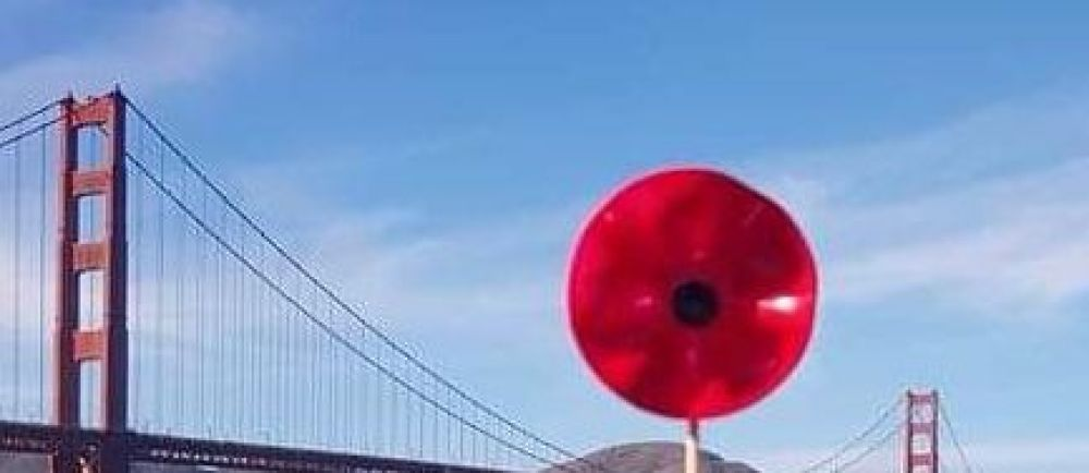 One of the Asda Tipton poppies in San Francisco