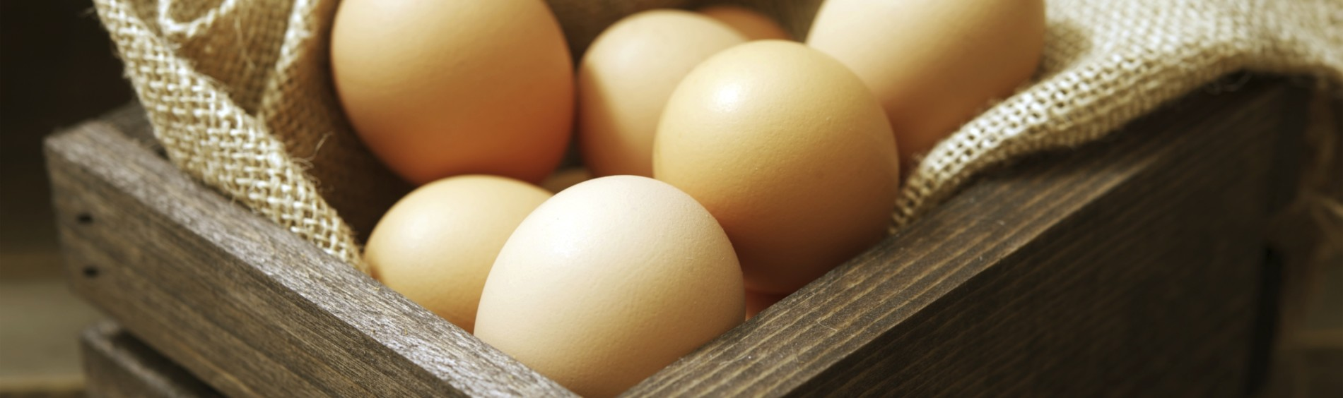 Cage free organic eggs in a basket
