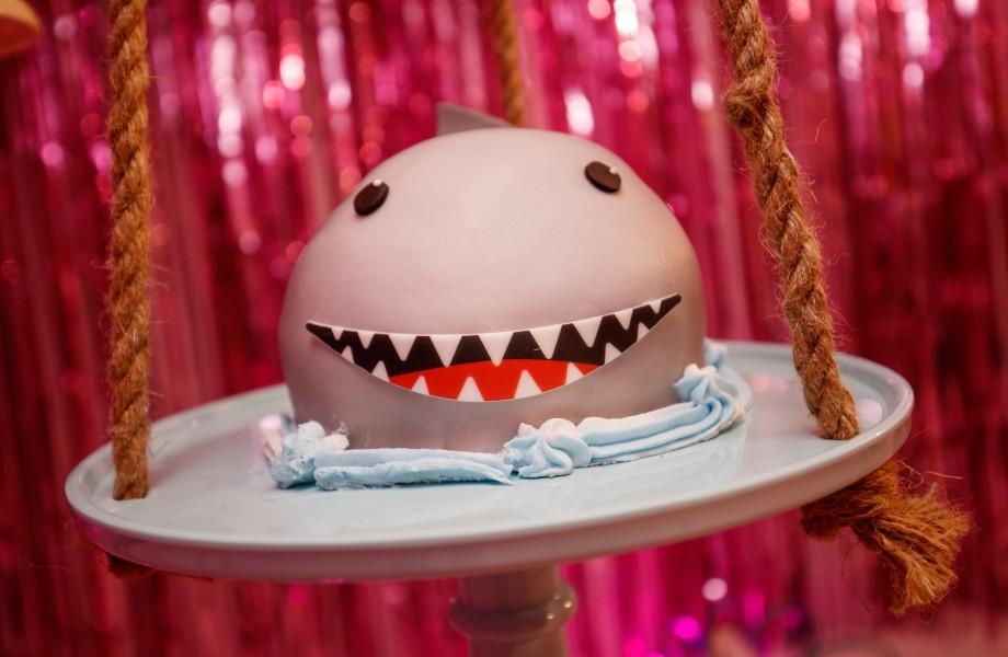 Shark Cake 2