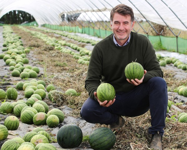 Asda watermelon grower Joe Cottingham
