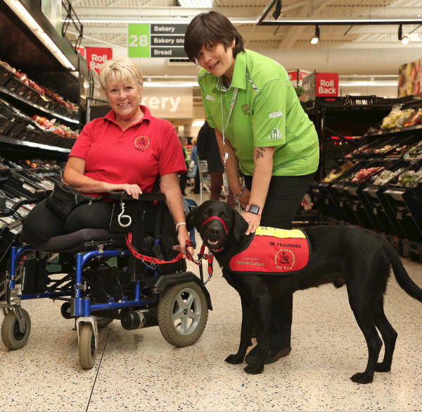 Assistance dog Paddy joins his owner Jill at Asda Golborne