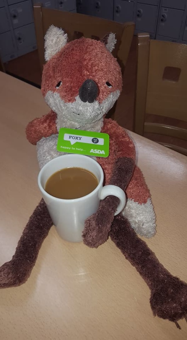 Foxy on his tea break at Asda Felling