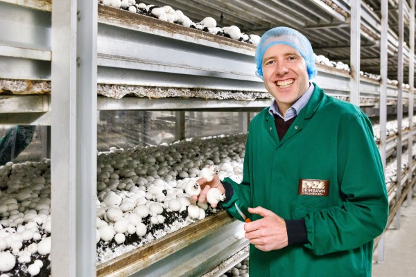 Asda is selling only locally-grown mushrooms from Monaghan Mushrooms at its stores in Yorkshire