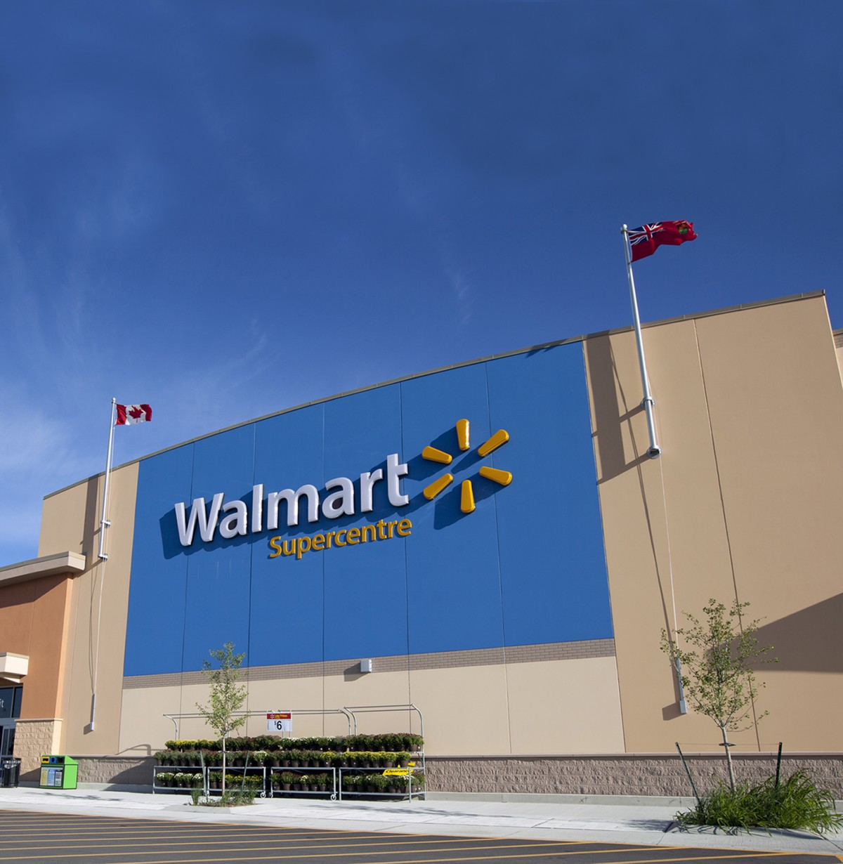 walmart financial resources Wal-mart was the biggest company in the world with sales at a quarter of a trillion and over 13 million employees, it was the biggest retailing success ever a lot of wal-mart's success was attributed to the strong and pervasive culture at the company, which was developed and nurtured by founder sam walton.