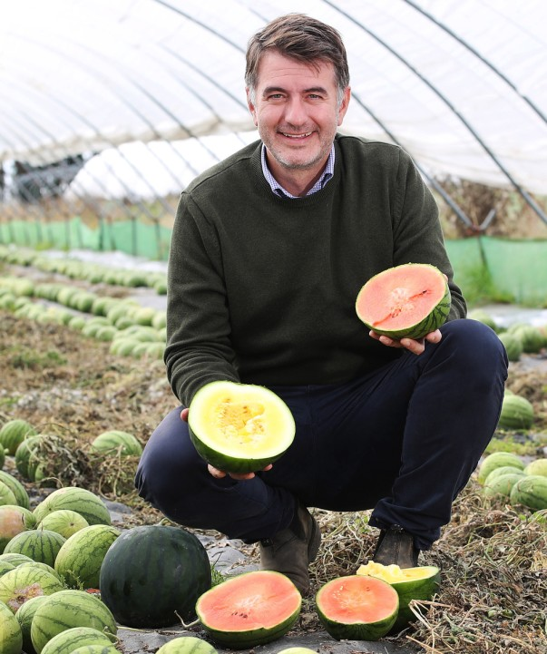 British watermelons from Asda