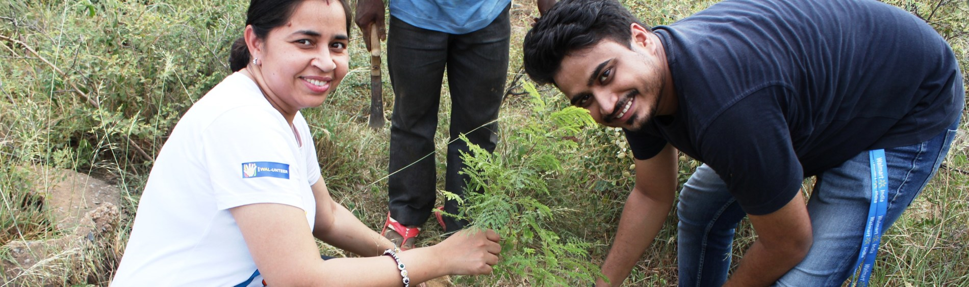 Walmart India associates volunteer by planting trees