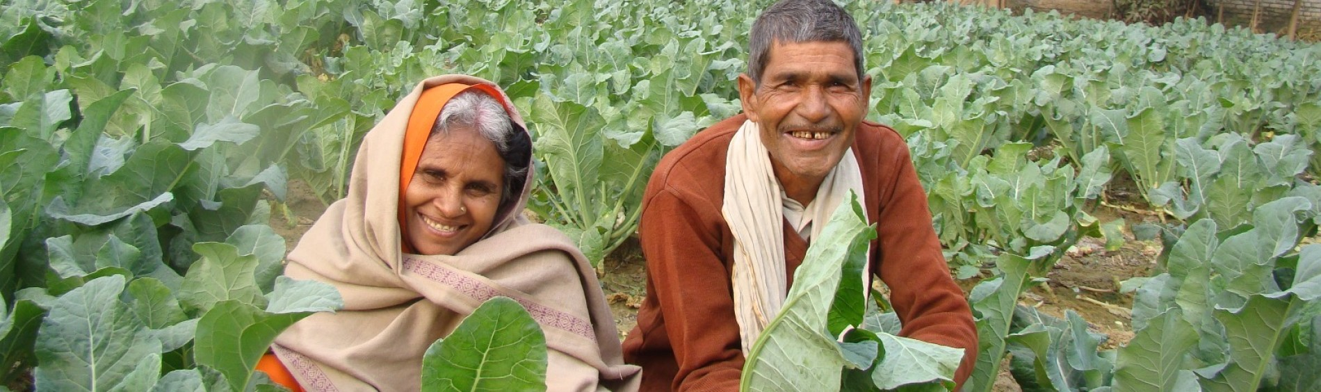 Two farmers are smiling in a field