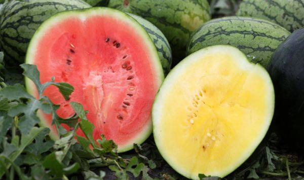 British watermelons now available at Asda