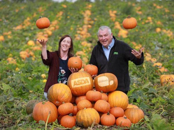 Locally-grown pumpkins from Gilfresh are on sale in Asda stores in Northern Ireland for the first time