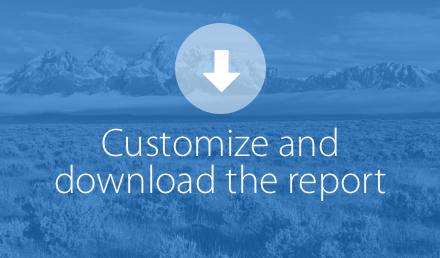Customize and download the report