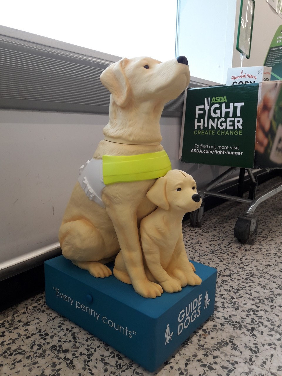 Guide Dogs for the Blind  | Asda Bournemouth