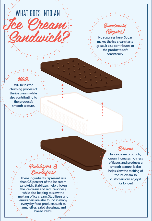 Ice Cream Sandwich Infographic