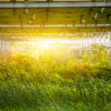 Solar garden in field stock image