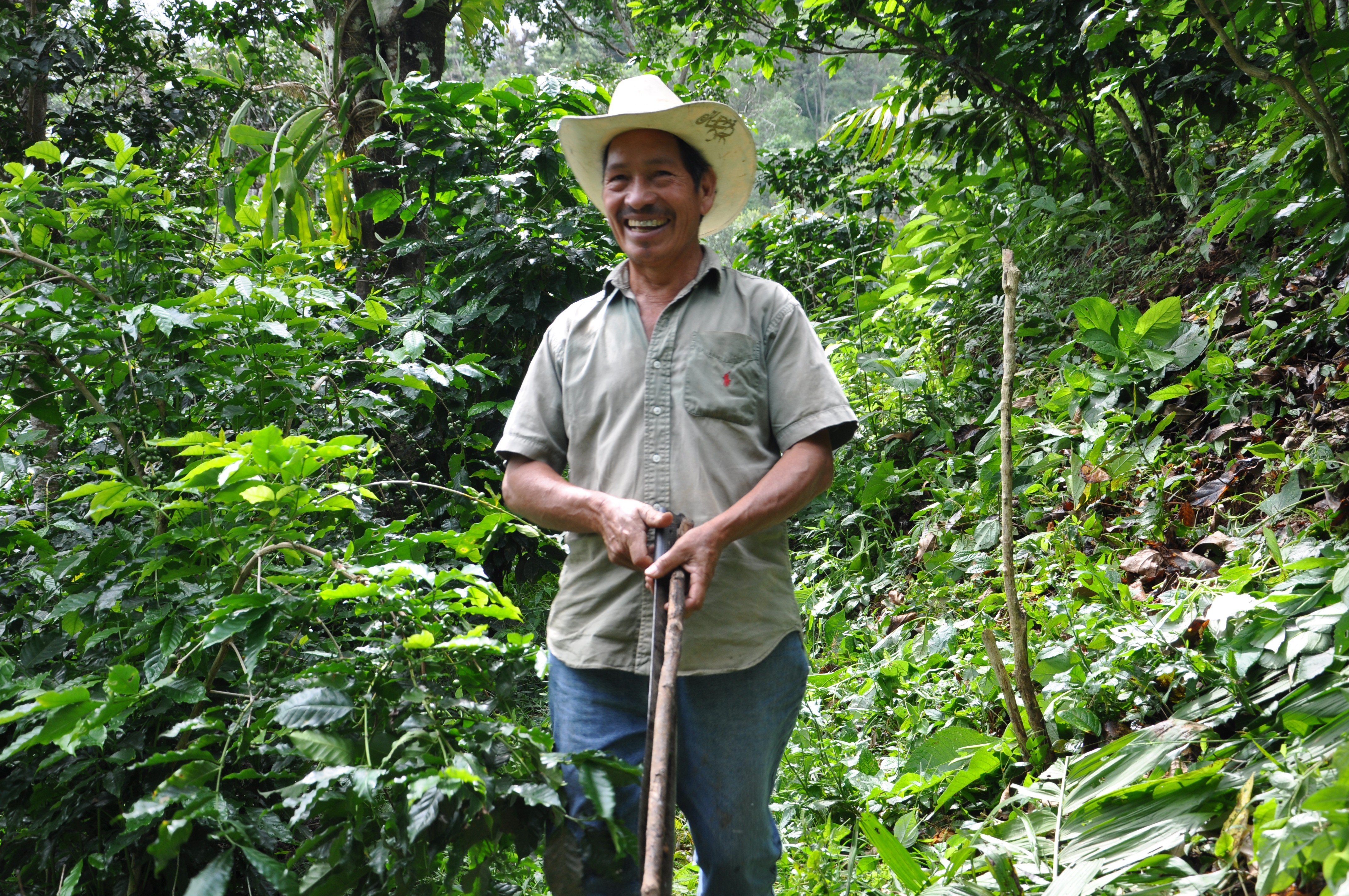 A coffee farmer in Mexico