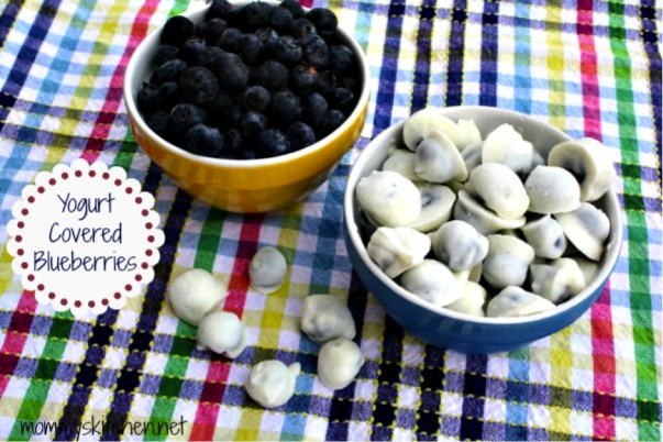 Yogurt Covered Blueberries