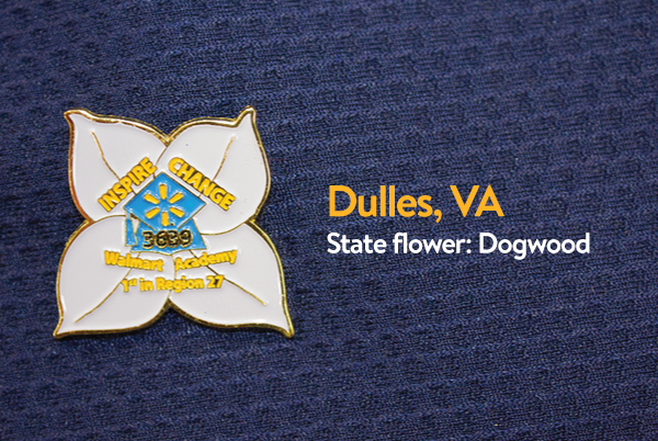 Walmart Academy Pin - Dulles, Virginia
