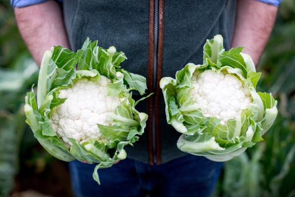 Asda's Cornish cauliflowers