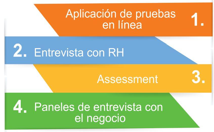 Proceso de Aplicación Programa Trainees